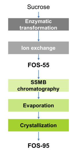 Novasep FOS 55 FOS 95 Production From Sucrose