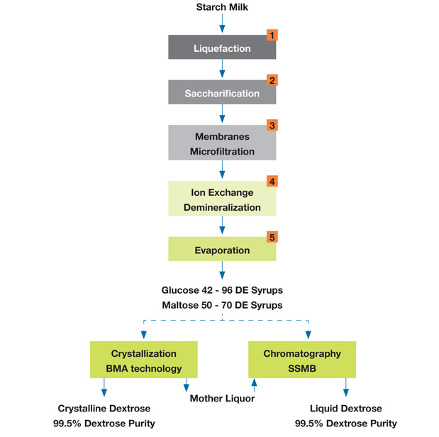 Starch sweeteners production - Novasep