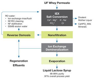 Novasep Liquid Lacrose Syrup Process