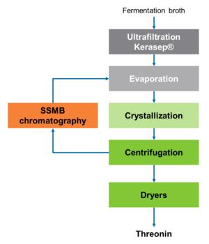 Novasep Threonin Manufacturing Process