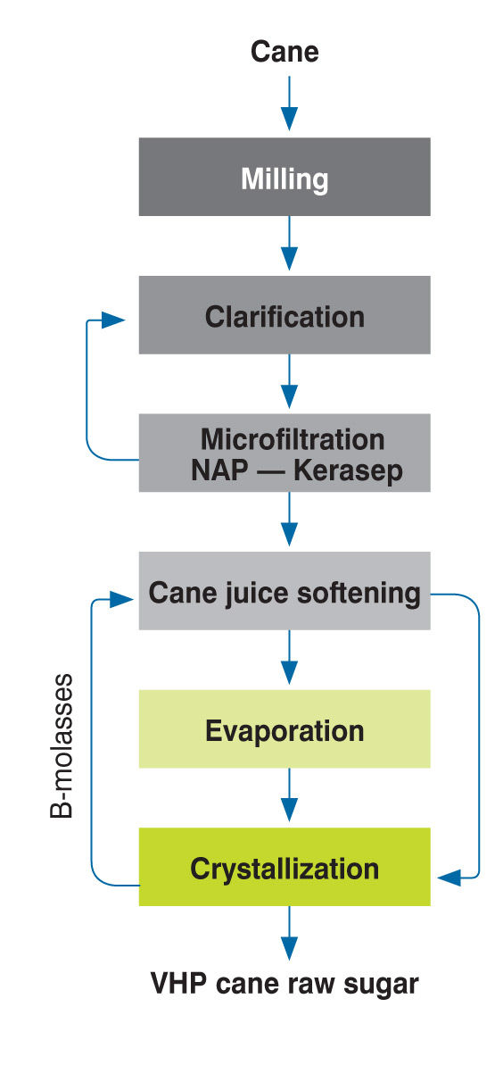 Saccharose production from sugar cane - Food ingredients