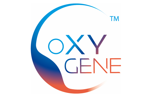 Novasep launches oXYgene™, a fully integrated offer ...